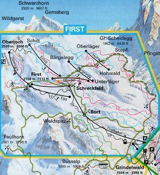 Plano de Grindelwald