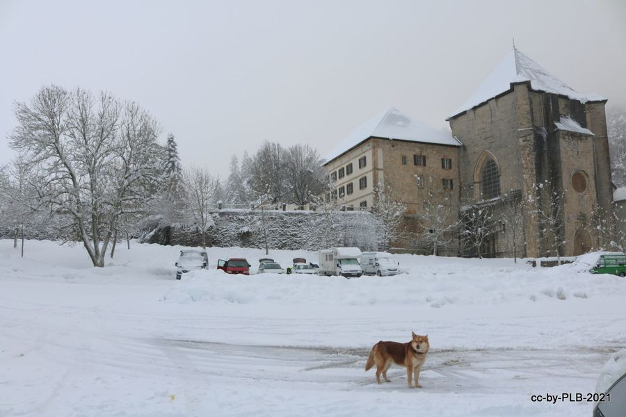 [2-ene] En Roncesvalles con mucha nieve