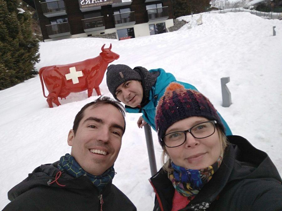 Ski-Safari Suiza - Enero 2019
