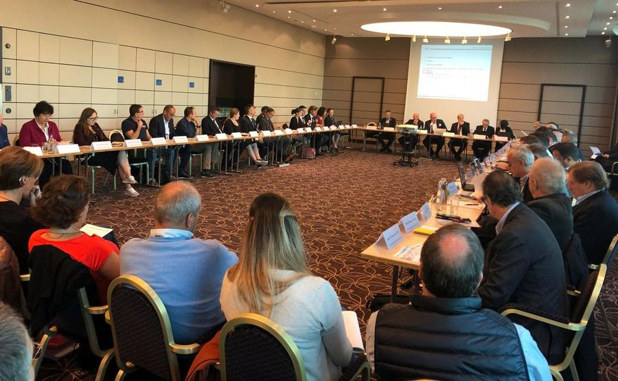 Reunión FIS y RFEDI
