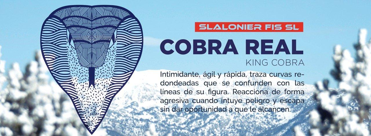 Kustom Skis SLALONIER COBRA 2016