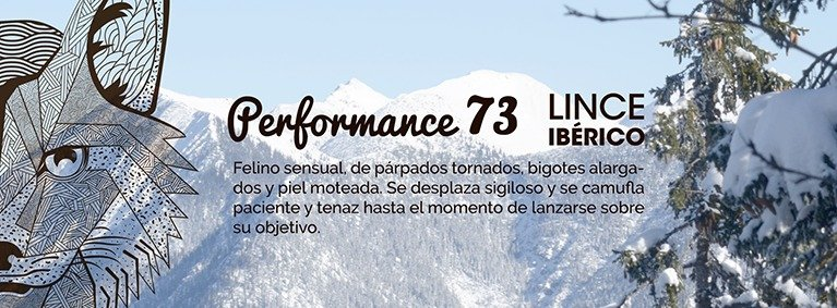 Kustom Skis PERFORMANCE 83 LINCE 2016