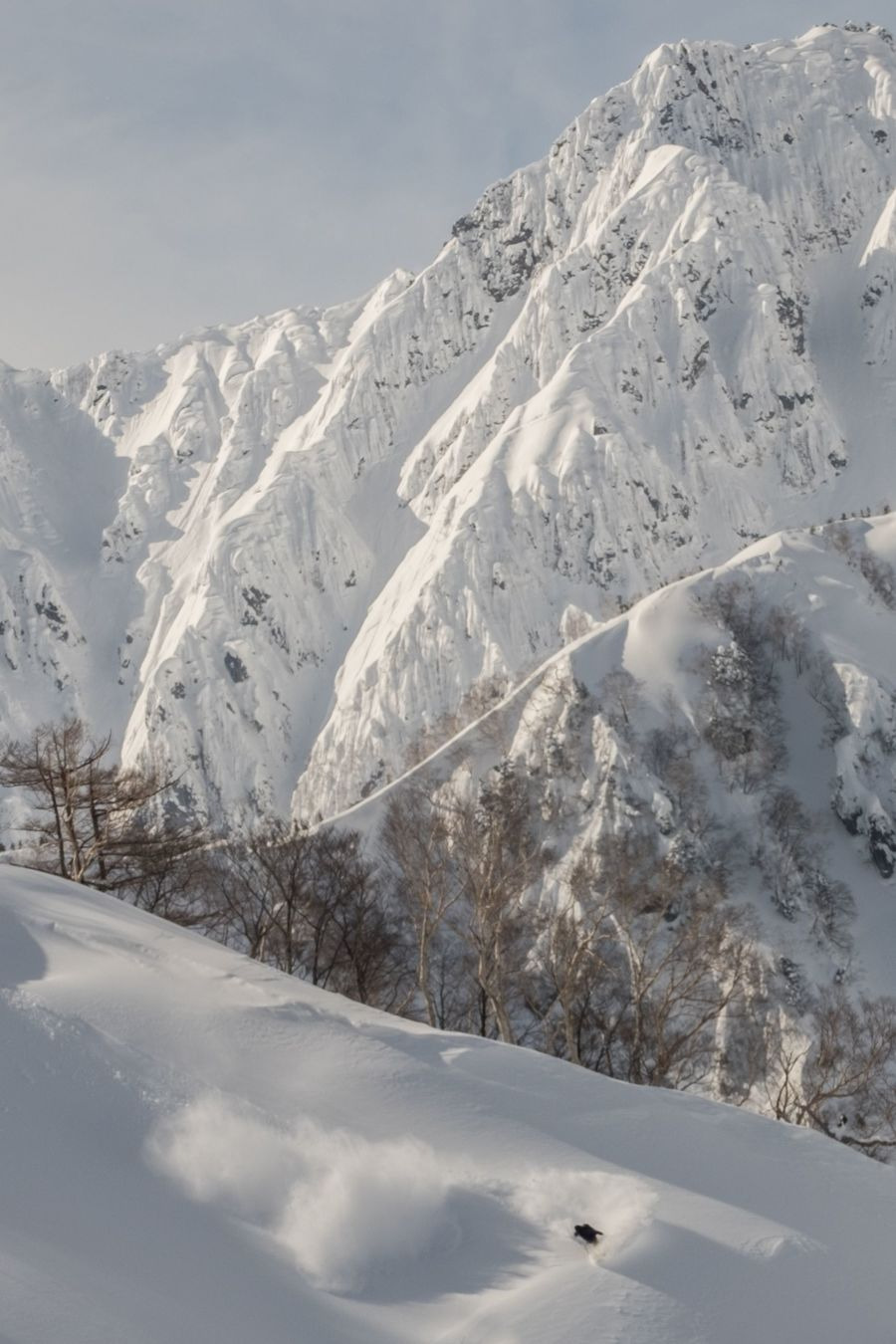 Life in White Japon