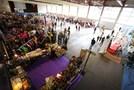 VIII Feria del Stock - Sallent de Gállego