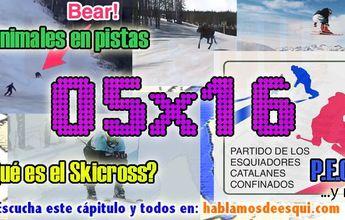 05x16 Animales en pistas, el skicross, P.E.C.C. y más!!