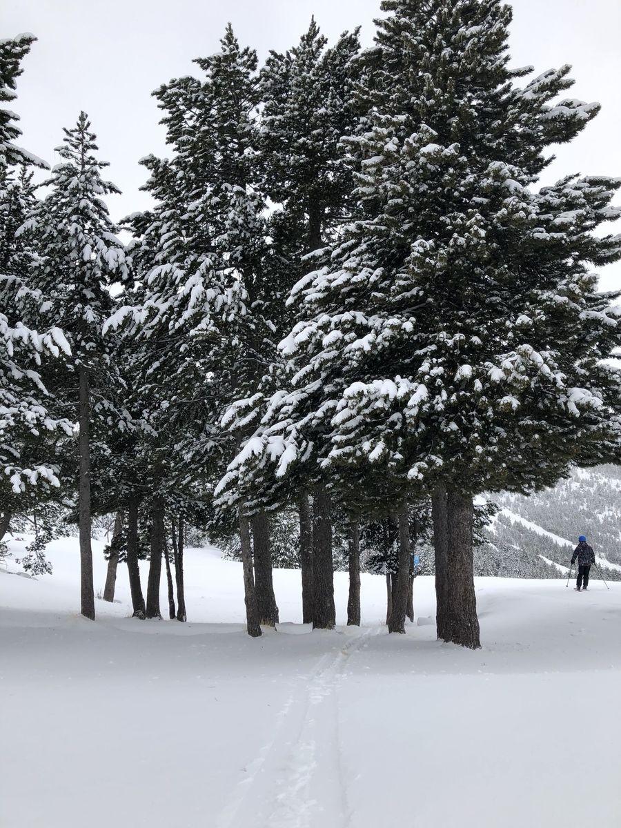 Pal Arinsal estacion esqui