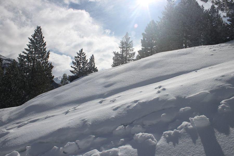 Candanchú, la joya del Pirineo Aragonés