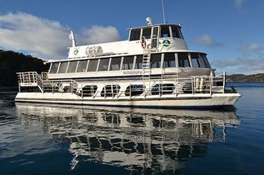 A La Angostura y Cerro Bayo, gratis en catamarán