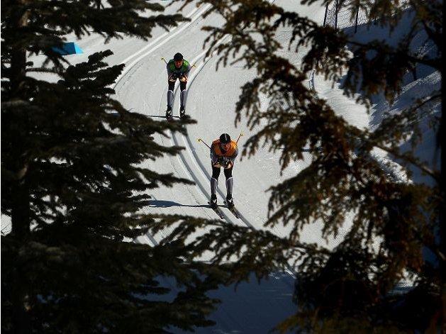 Fotografía de dos de los participantes de esquí de fondo en una pista entre pinos