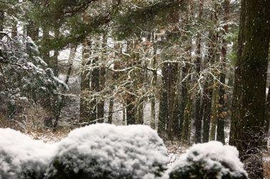 12 de octubre. Nieve en las cimas