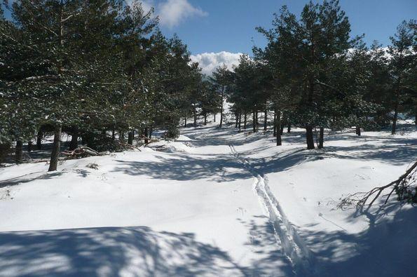 AL.A.S.C.A (Almería: Amazing Snow in Calar Alto)