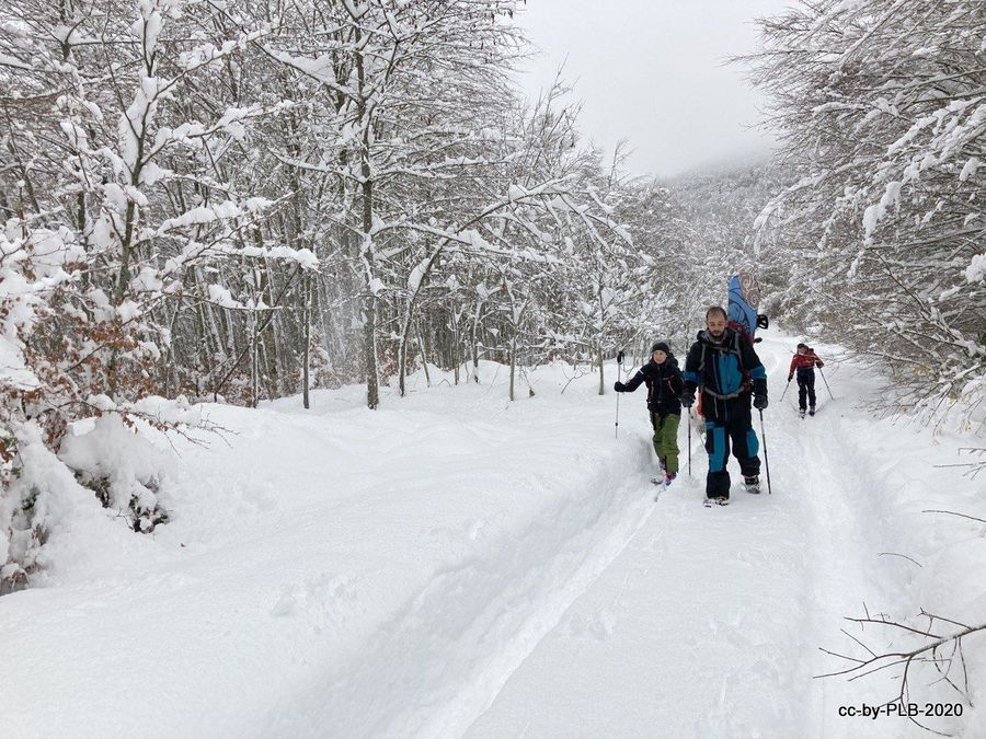 [7-dic] Esquiando el Puente de diciembre en la era COVID (Parte 2)