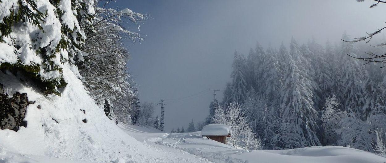 Puro invierno