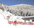 Imágenes de la nevada en el Pirineo (06/03/2008)