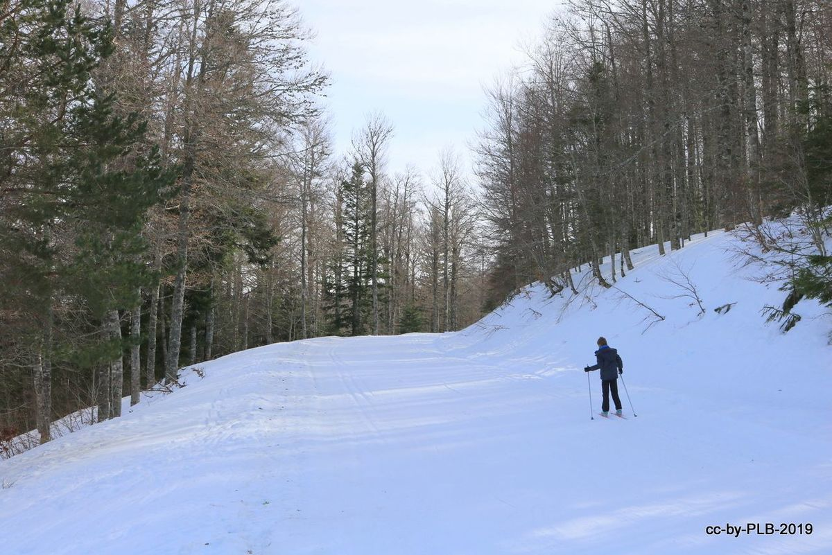 Mi estreno en el esquí nórdico en Abodi