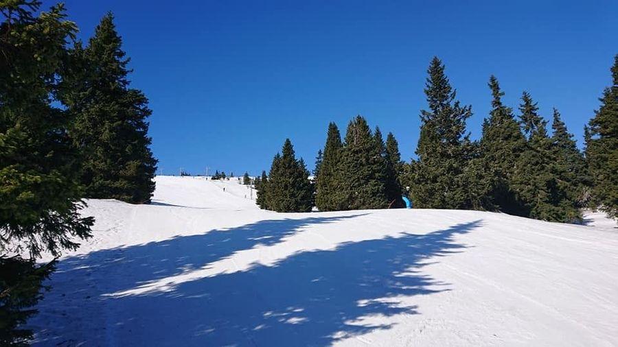 chequia esqui