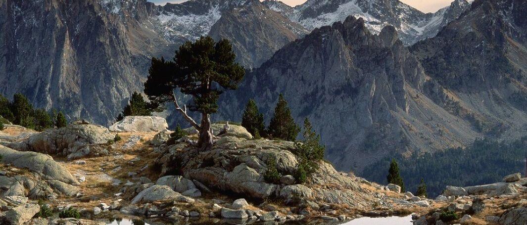 El nuevo modelo de turismo de proximidad, parte 2