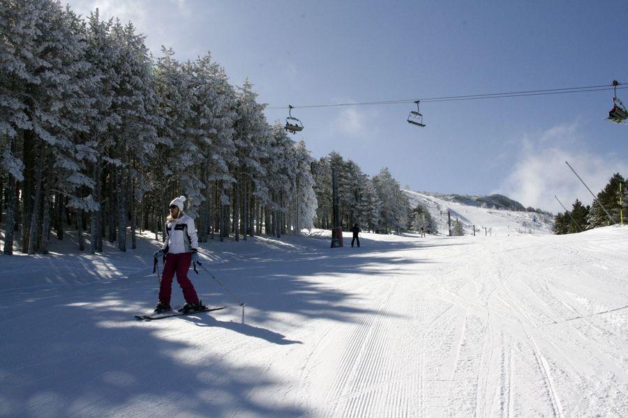 Esquiadores en bosque javalambre