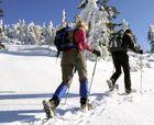 Andorra quiere regular el esquí de montaña ante de fin de temporada