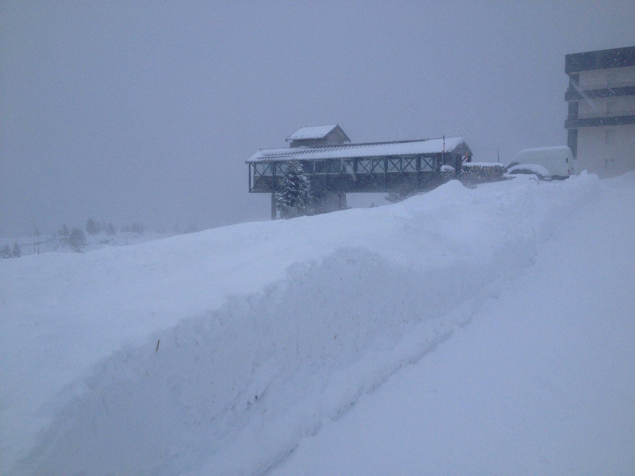 nevada en N'PY
