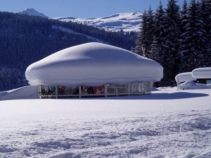 Meissl Ski