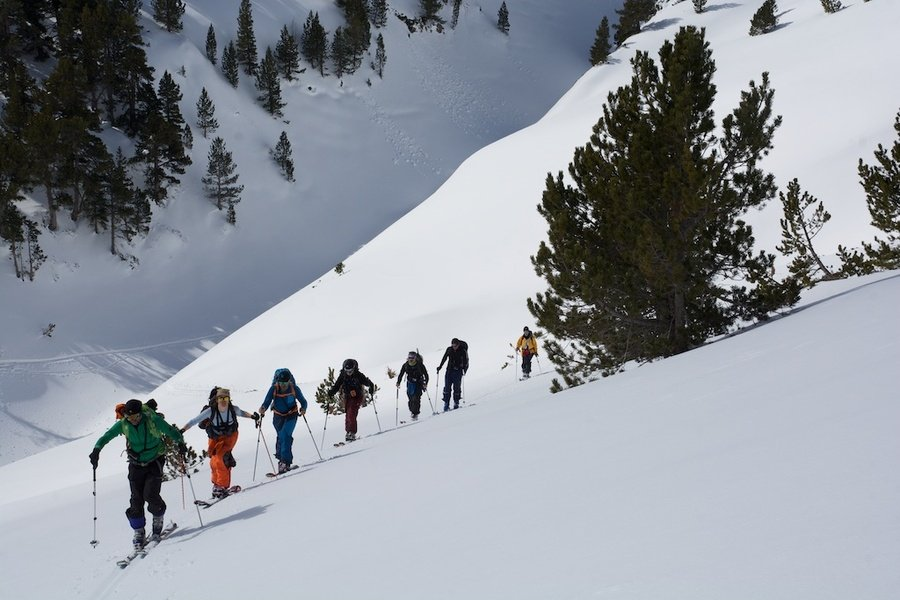 ¿Cómo elegir unas fijaciones de esquí montaña?