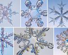 20 cms. de Nieve Caerían en los Próximos Días