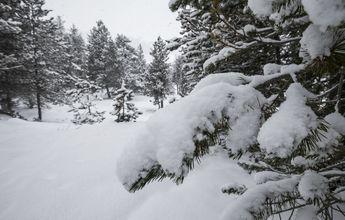 Andorra espera temperaturas de hasta -25ºC