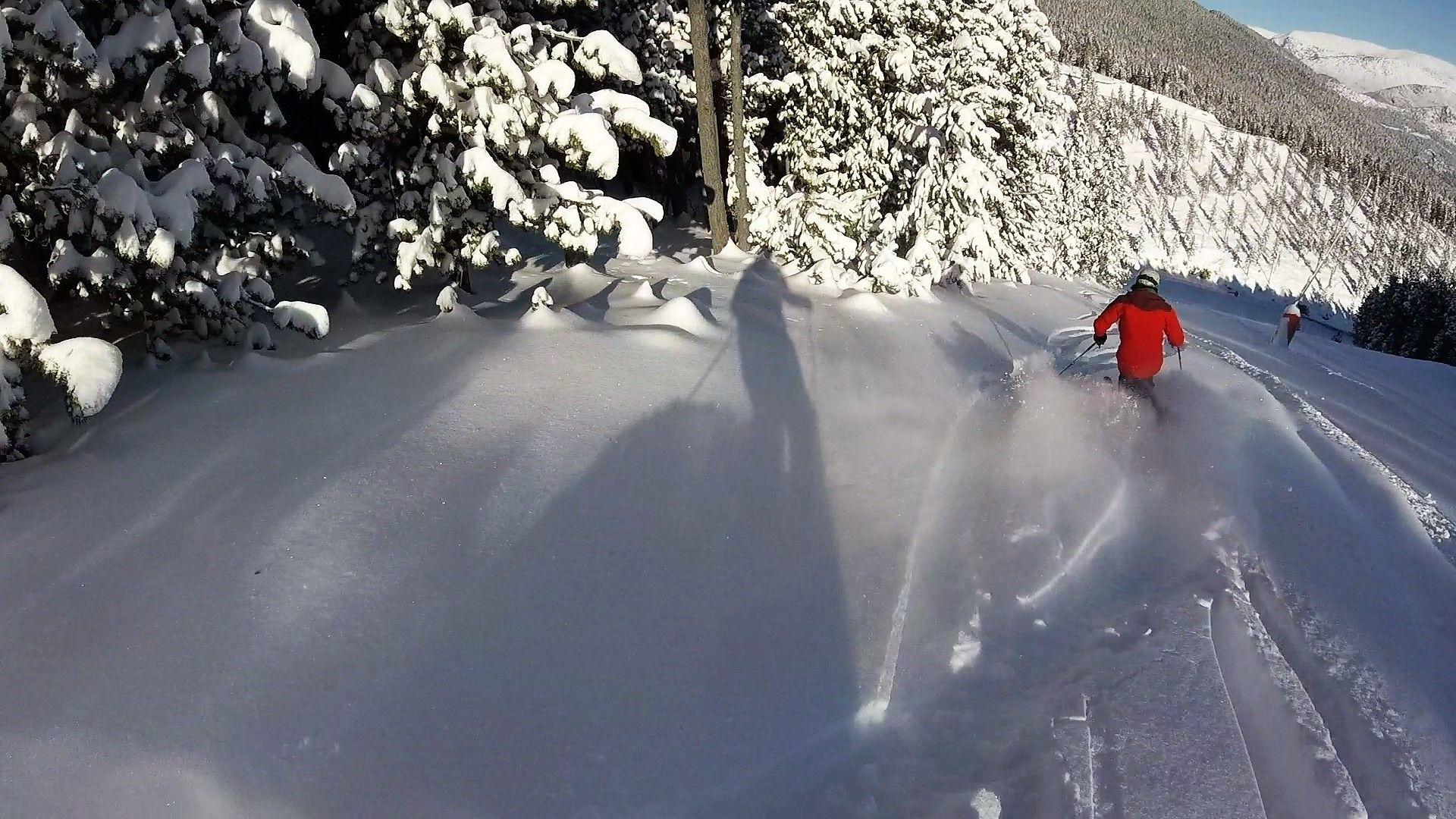 Nieve polvo
