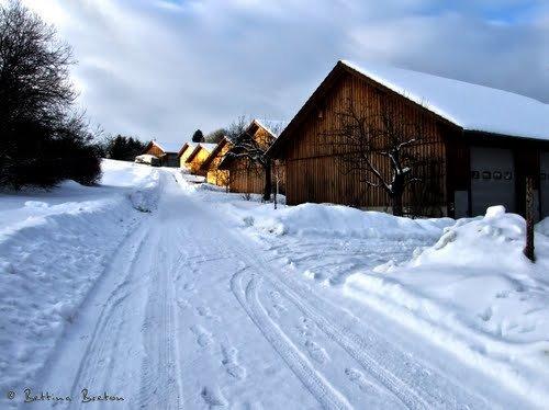 Foto de Dottingen