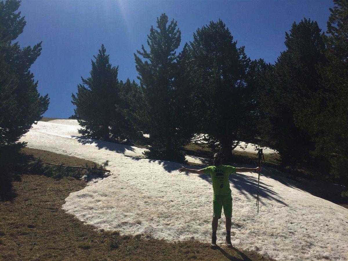 Clapitas de nieve