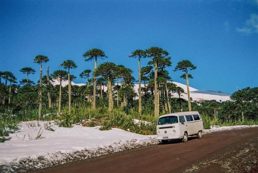 Volkswagen T2 Kombi Life in White Adventures