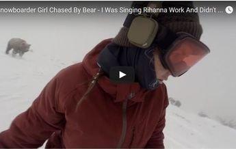 ¿El video del oso? Un fake realizado por una empresa australiana