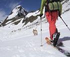 15 novedades 2016/17 en esquí de montaña