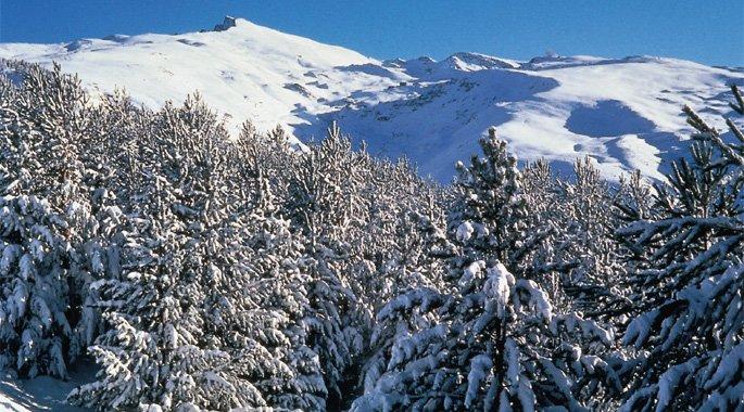 Resultado de imagen de Sierra Nevada