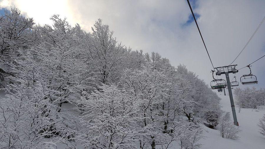 Fuentes de Invierno. 19 Febrero