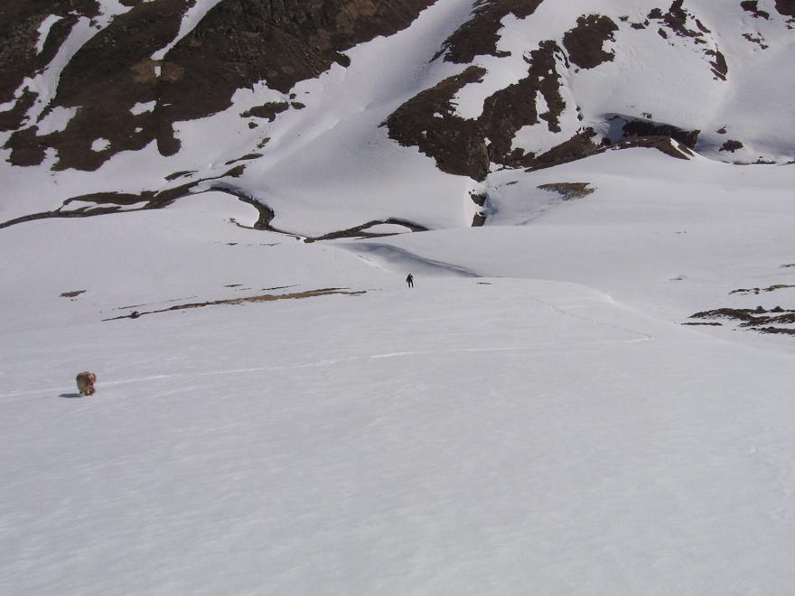 Sierra Nevada Abril 2009