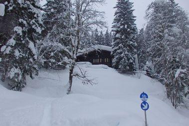 Salzburgerland Enero 2019