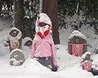 Fin de año esquiando en Japón