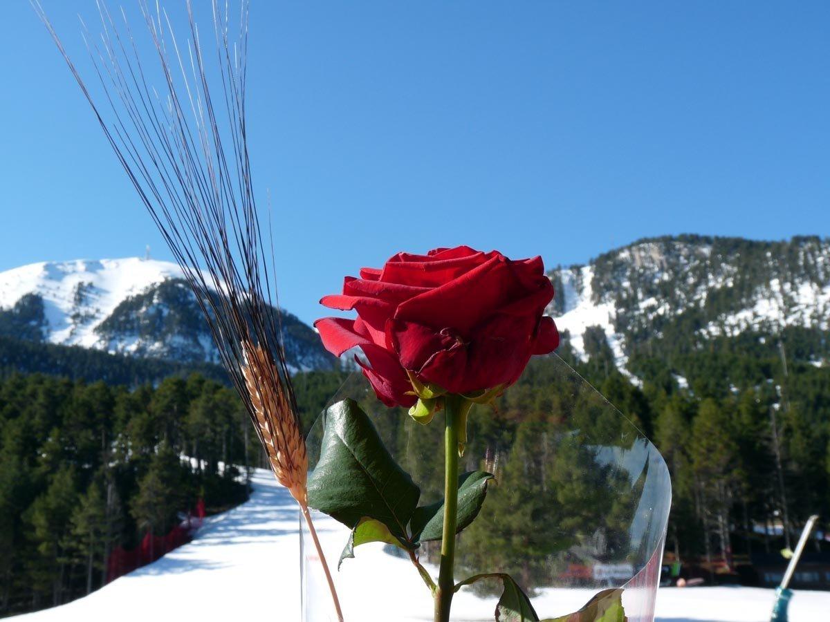 Per Sant Jordi esquia a Masella