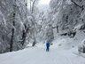 Por la pista Zorritos, en Nevados de Chillán
