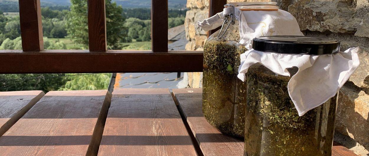 ¿Cómo hacer Ratafía casera? El licor del Pirineo Catalán.