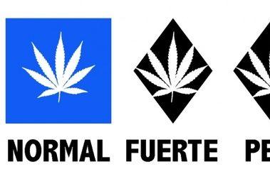 Esquí y Marihuana...mala combinación.