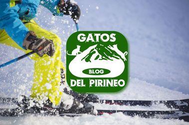 Agencia de viajes GATOSDEL PIRINEO. COM