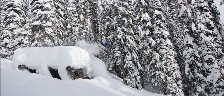 El Paraíso de la Nieve