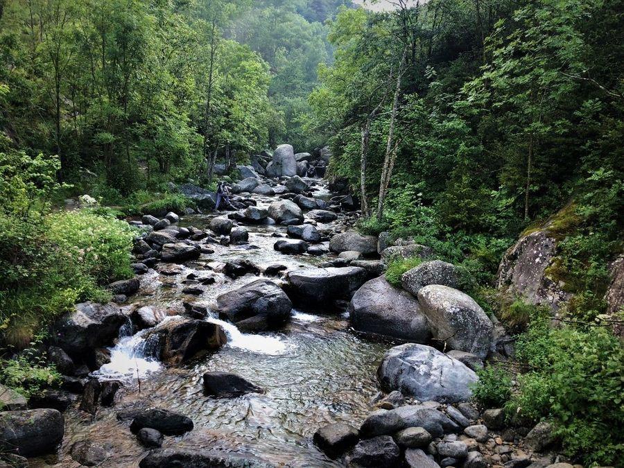 Río Freser