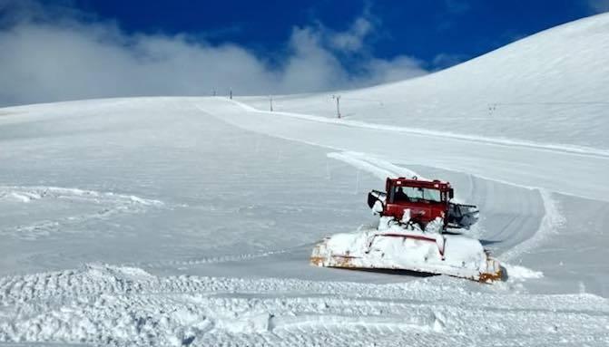 ski araucarias