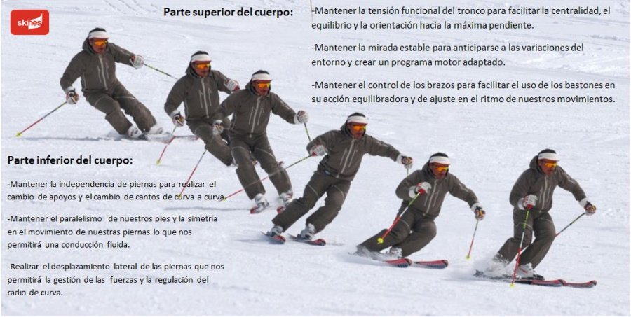 diferenciacion_poster