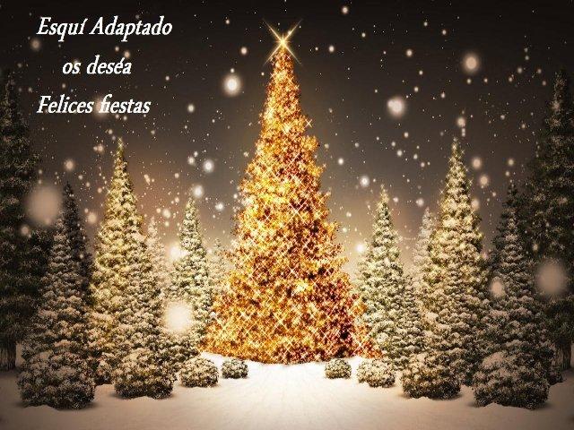 Fotografía de árboles navideños decorados con luces con el escrito, esquí adaptado os desea