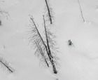 Dave and Tessa Treadway shred with Great Canadian Heliskiing.